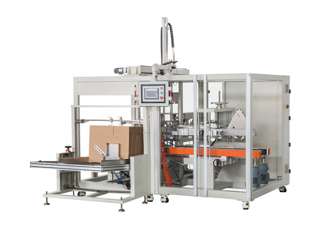 Top Load Case Packer-Servo Pick and Place